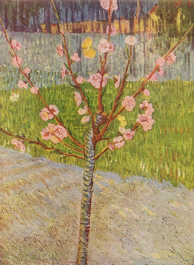 658px-Vincent_Willem_van_Gogh_013