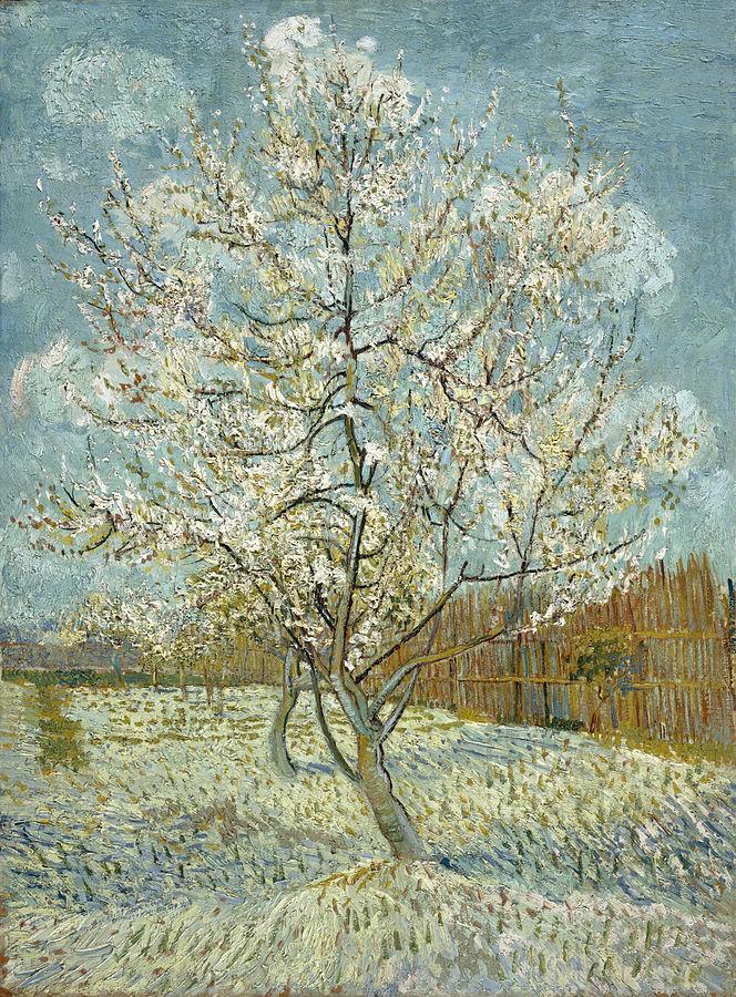 664px-Vincent_van_Gogh_-_De_roze_perzikboom_-_Google_Art_Project