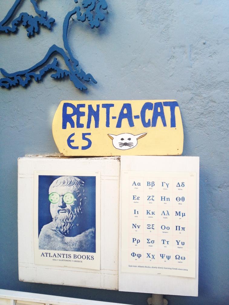 RENT A CAT.jpg